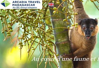 Arcadia Travel Madagascar